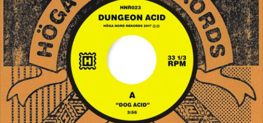 Dungeon Acid Dog Acid cover